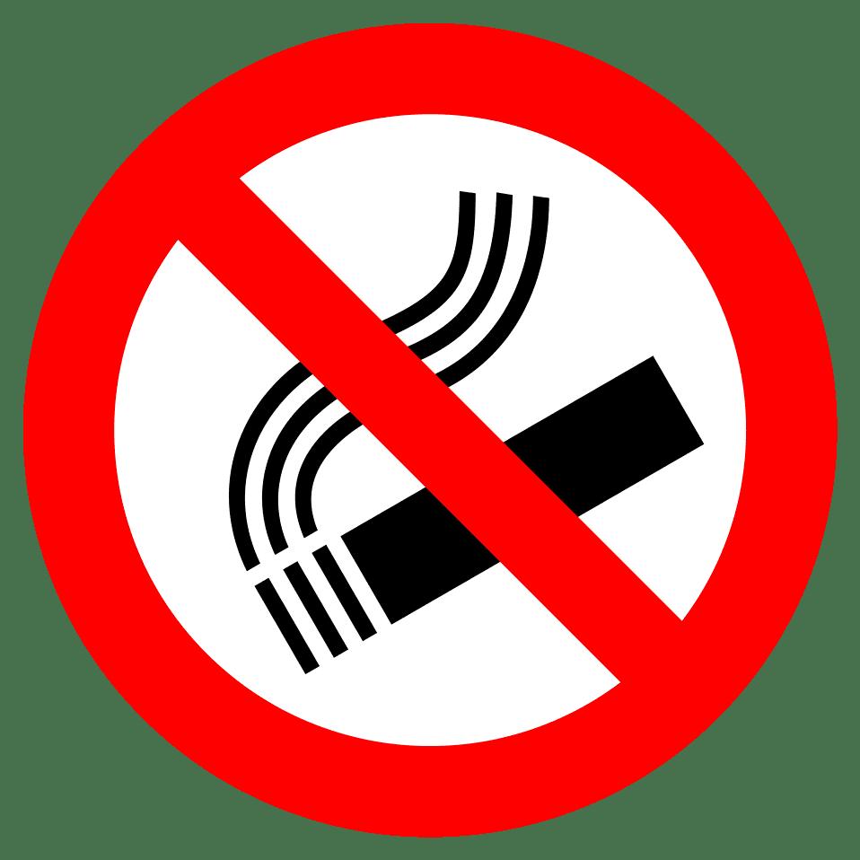 Resultado de imagem para no smoking