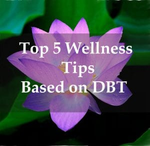 wellness_tips_dbt