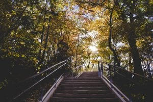 steps in woodland park